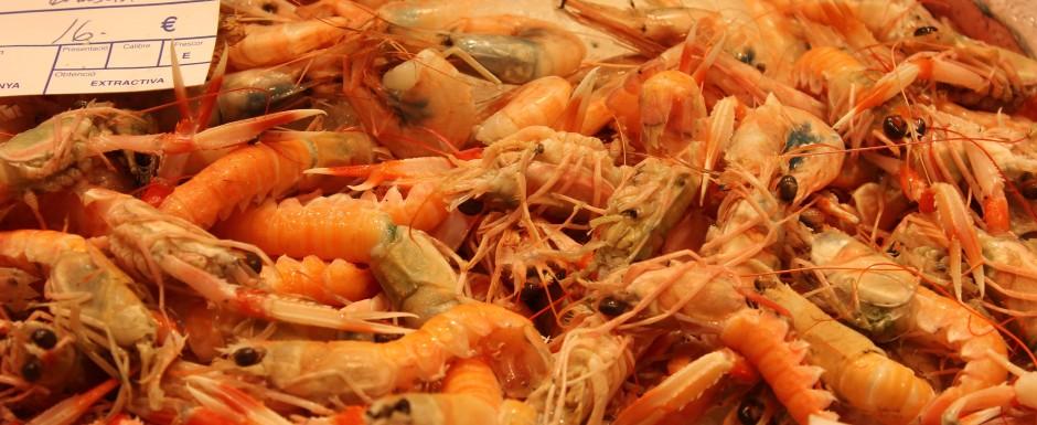 What to eat in Sant Feliu de Guixols - fish