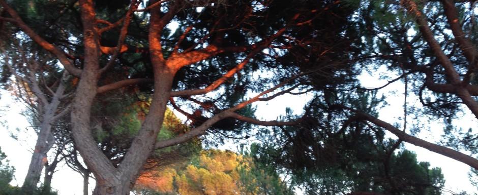 Sant feliu de guixols in november - sunset