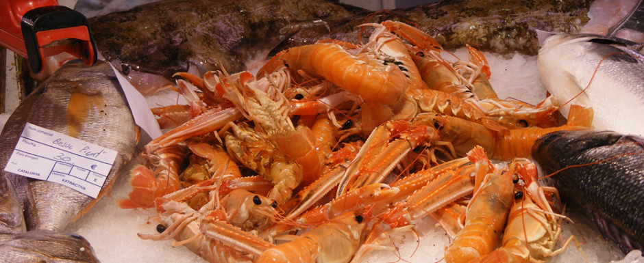 Crayfish in the fish market in Sant Feliu de Guixols, home of our vacation rental