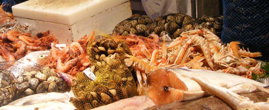 Seafood in the market in Sant Feliu de Guixols our holiday rental near Girona